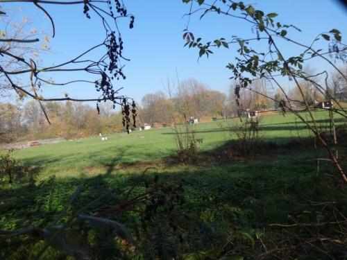 Zieleń stanowi ok. połowy terenu jednostki. To wymarzone miejsce na park.