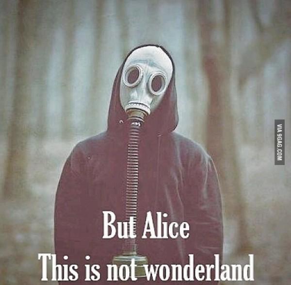 Alicja wonderland maska