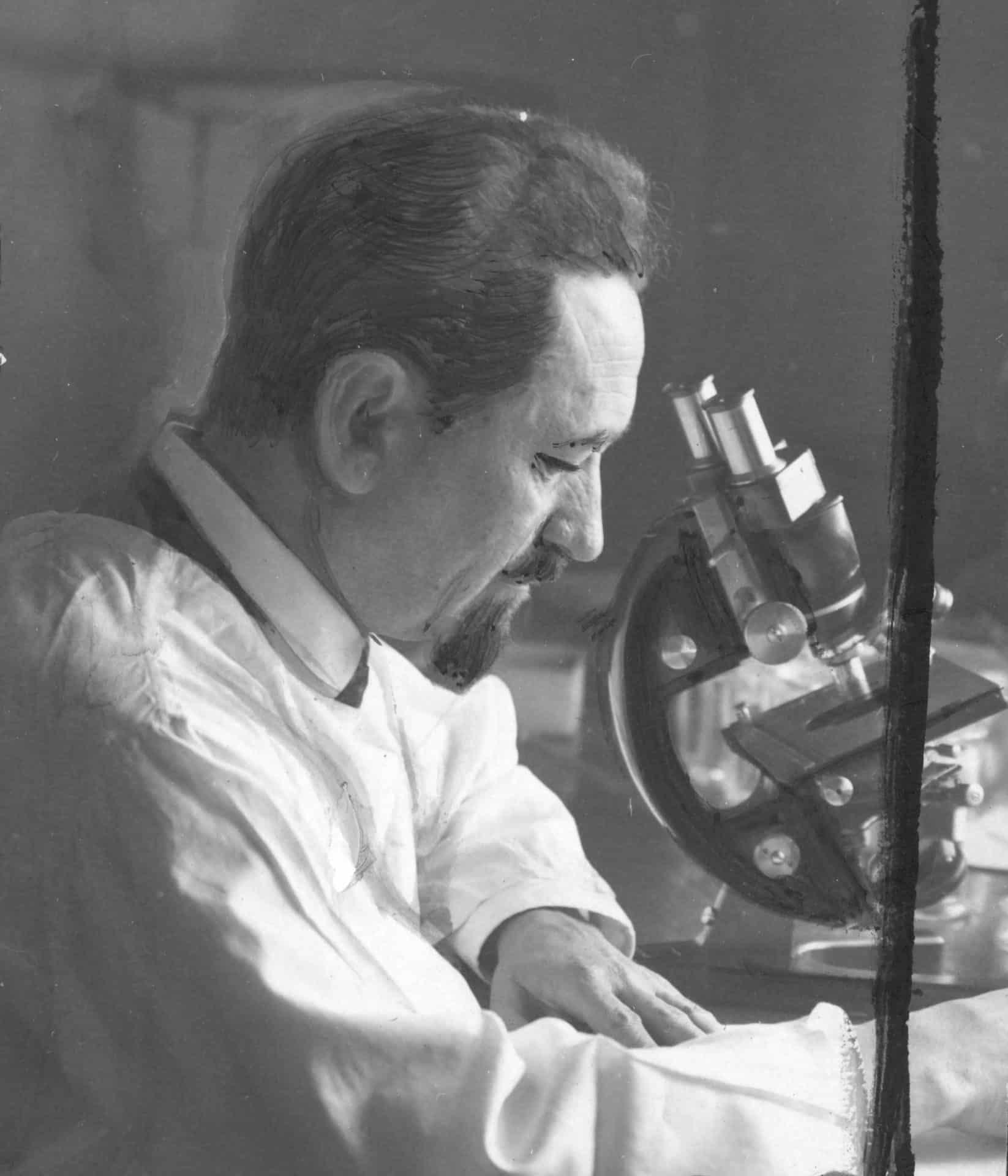Rudolf Weigl przy pracy. Źródło: Narodowe Archiwum Cyfrowe.