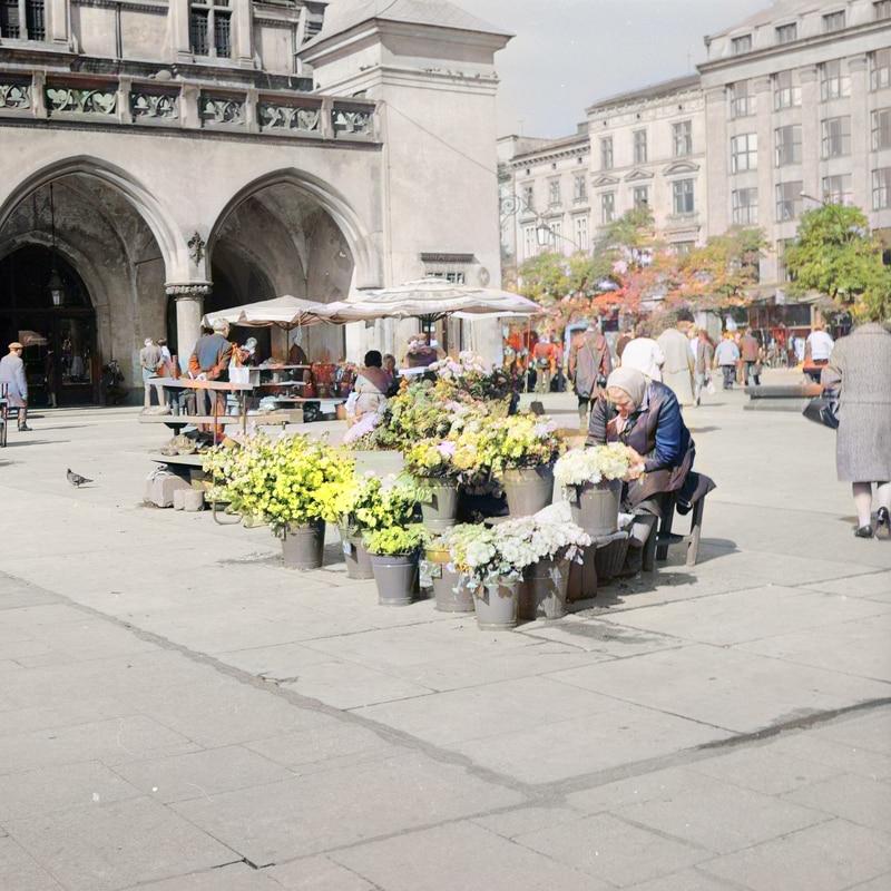 Krakowskie kwiaciarki. Lata 50. lub 60. XX wieku. Źródło: Narodowe Archiwum Cyfrowe.