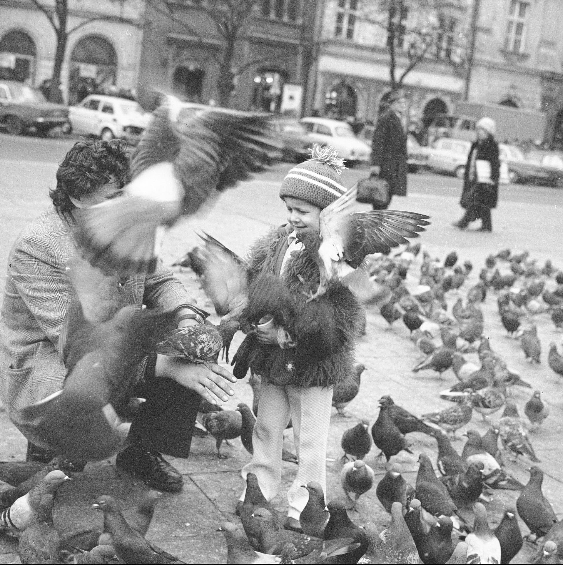 Co warto zobaczyć w Krakowie? Karmienie gołębi na Rynku 1978