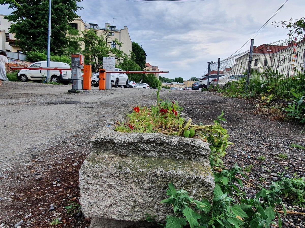 Zielona Stolica Europy 2023 Kraków