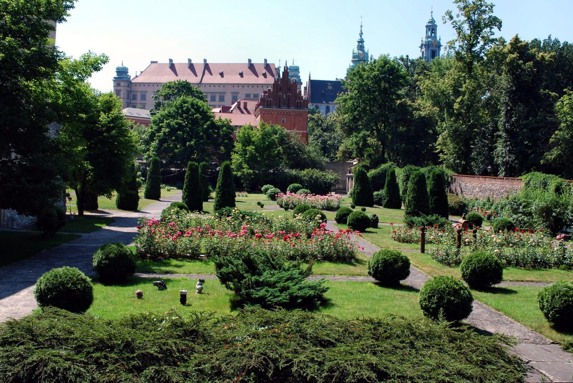 Ogród Muzeum Archeologicznego w Krakowie. Fot. Delimata/Wikimedia.